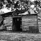 This Old Barn by Deborah Downes