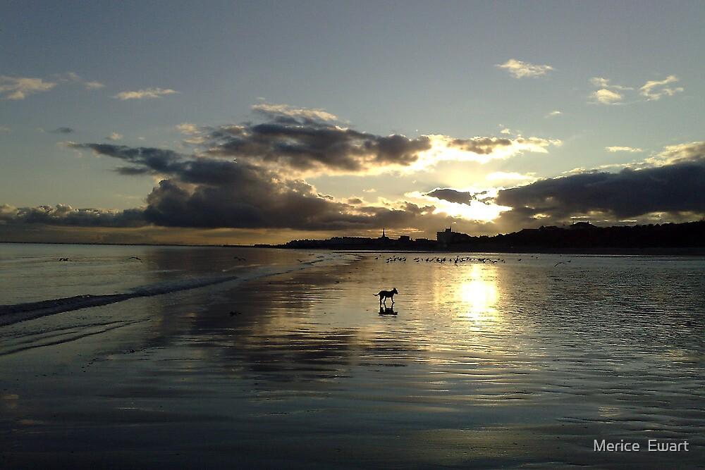 December Sunset Bridlington by Merice  Ewart-Marshall LFA