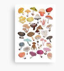 Mushroom Medley Canvas Print