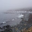 Winter fog, Ragged Beach by Jean Knowles