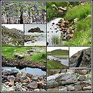 Felsiges Gelände - wilde Natur-Collage von BlueMoonRose