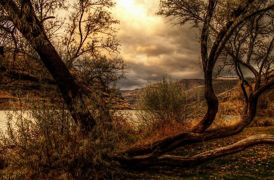 Sneak a Peek at the Snake River  by Terence Russell
