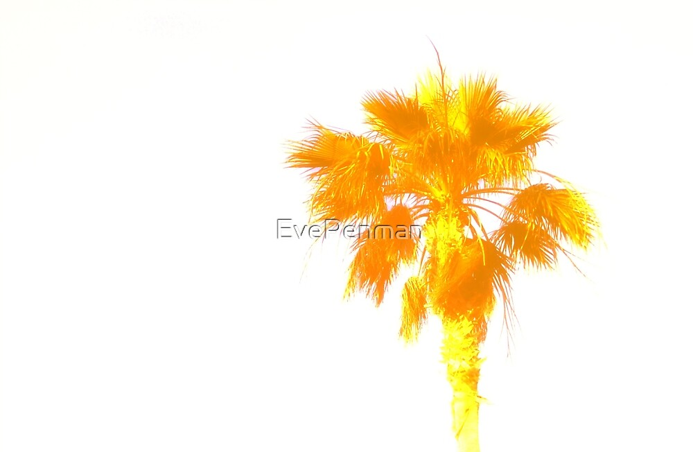 Golden Palm by EvePenman