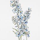 Blaue Ritterspornblumen von JRoseDesign