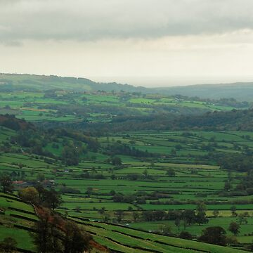GREEN FIELDS OF YORKSHIRE by andrewsaxton