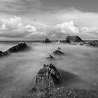 Wrangle Point Bude by eddiej