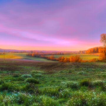 October Morning 12 by wekegene