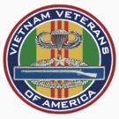 Vietnam vet emblem. by Walter Colvin