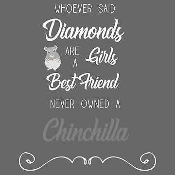Whoever Said Diamonds Are A Girls Best Friend Never Owned A Chinchilla by leeseylee