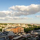 Madrid Cityscape from Above - Fine Summer Afternoon by Georgia Mizuleva