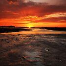 Sunset Lake path by Lacy O.