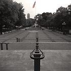 USA Flag by morningdance