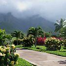 Misty hills of Maui by Marjorie Wallace