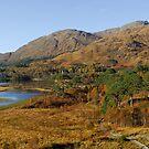Glenfinnan Autumn Scotland by John Kelly Photography (UK)