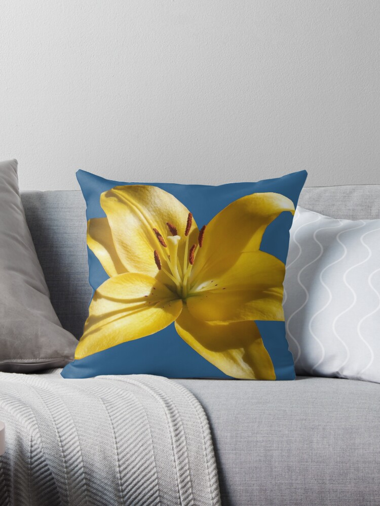 Yellow Garden Lily On Blue Background by hurmerinta