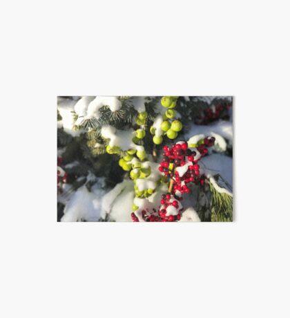 Winter Berries (Banff, Canada) Art Board Print