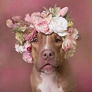 Flower Power, Harper by Sophie Gamand