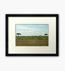 a stunning South Africa landscape Framed Print