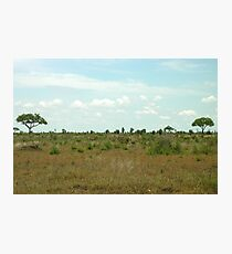 a stunning South Africa landscape Photographic Print