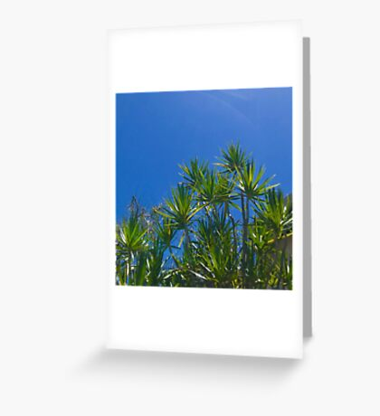 Blue skies above (Peregian Beach, Qld) Greeting Card