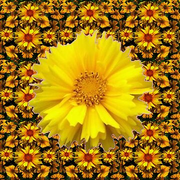 YELLOW COREOPSIS FLOWER GARDEN PATTERN by sharlesart