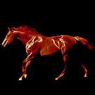 Fiery Night Rider by laureenr