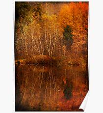 restes d'automne Poster