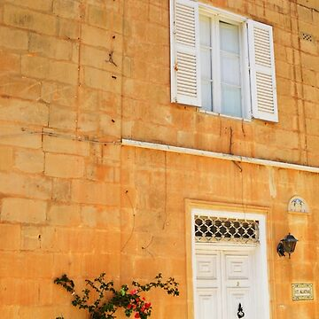 Single Ivy Stem. Mdina, Malta by IgorPozdnyakov