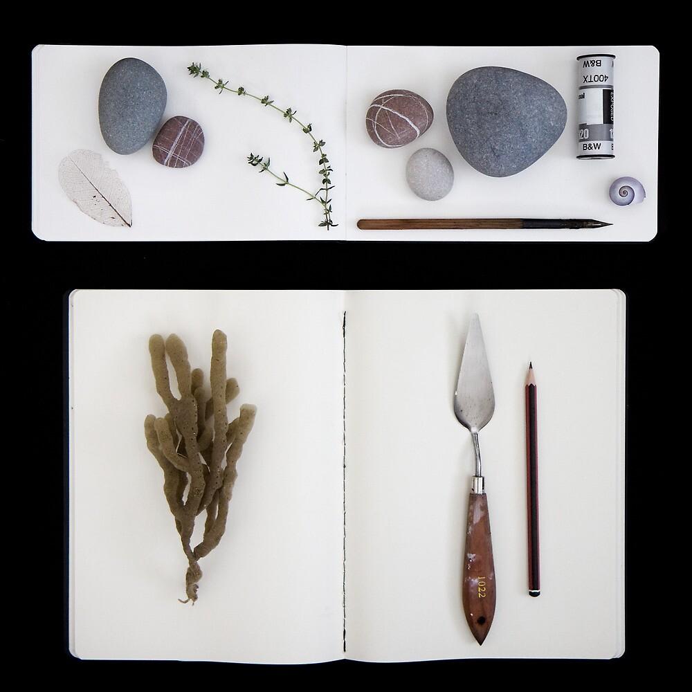 arrangement by Sue Hammond