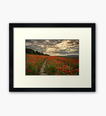 Poppies Sunset - South Downs Sussex Framed Print