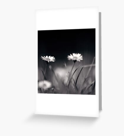 its quiet down here... Greeting Card