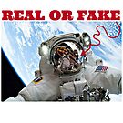 REAL OR FAKE by DMEIERS