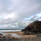 Chapel Porth Beach. Cornwall UK by lynn carter