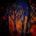 A Blue Wood by ©Janis Zroback