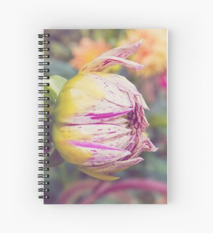 AFE Purple Striped Dahlia Nature Photography Spiral Notebook