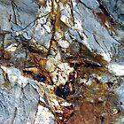 Landslide by Kathie Nichols