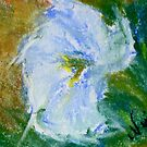 Field Bindweed 2 (pastel) by Niki Hilsabeck