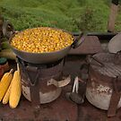 Corn  by Charuhas  Images