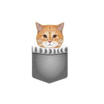 Cat in Pocket Cute Realistic Orange British Shorthair Kitty by JapaneseInkArt