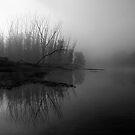 Misty Macdonald River by Ian English