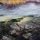 Spawners up the Creek - Fly Fisher Series by Pieter Zaadstra