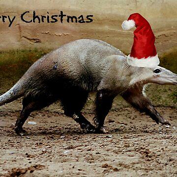 A Merry Christmas Aardvark by Ladymoose