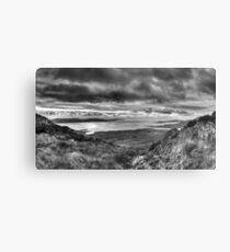 Bantry bay from Sugarloaf Metal Print