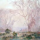Fallow Deer Morning - Central Highlands Tasmania by Pieter Zaadstra