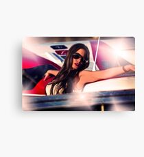 Fashion Airplane Fine Art Print Canvas Print