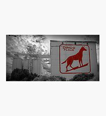 Dingo Flour - Fremantle - WA Photographic Print