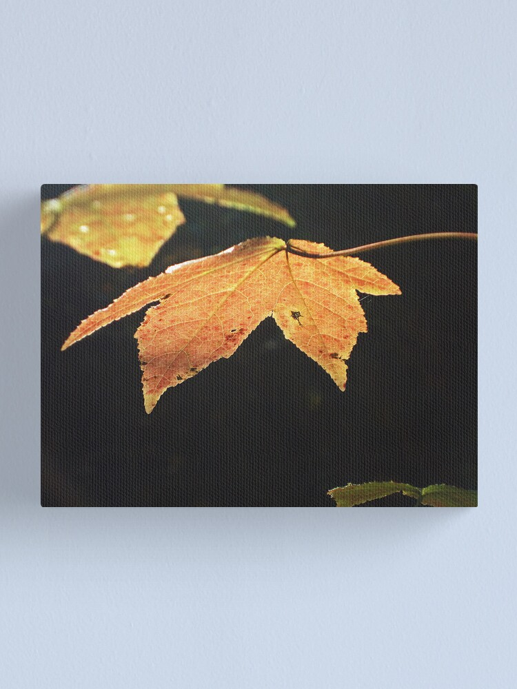 Alternate view of Leaf Canvas Print
