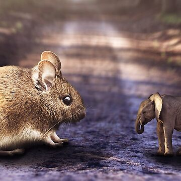 Mouse vs elephant photoshop manipulation by Melcu