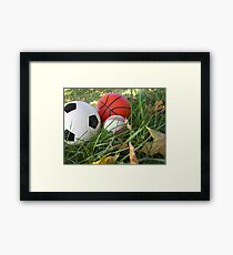 which sport will you choose Framed Print