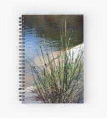 Mannum Falls Spiral Notebook